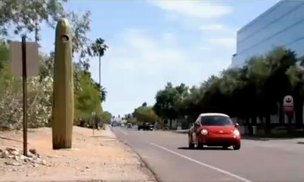 """Radar : les américains inventent le """"radar cactus"""" (vidéo)"""