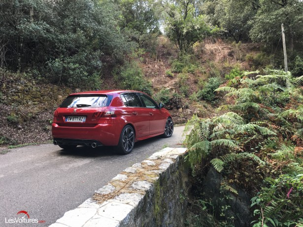 Peugeot-308-GTi-Corse-41