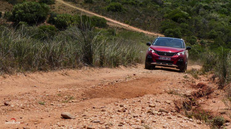 afrique-de-sud-15-road-trip-les-voitures-m6-turbo-seat-ateca-peugeot-3008-nissan-qashqai