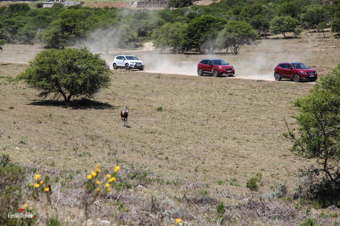 afrique-de-sud-16-road-trip-les-voitures-m6-turbo-seat-ateca-peugeot-3008-nissan-qashqai