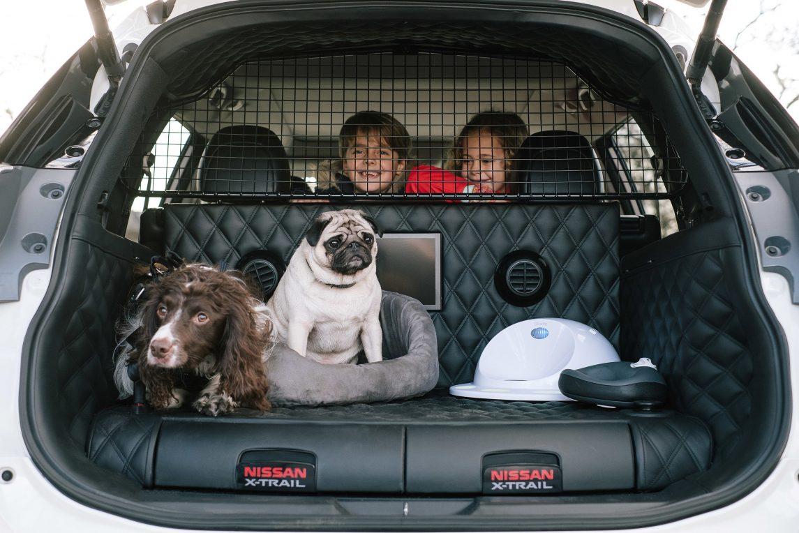 nissan x trail 4dogs concept l 39 ami des b tes version suv les voitures. Black Bedroom Furniture Sets. Home Design Ideas