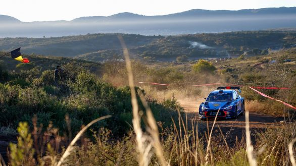 Hyundai-argentina-neuville-podium-wrc-winner