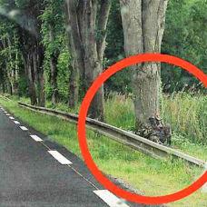 Radar jumelles : le piège du «gendarme Rambo» en tenue de camouflage militaire