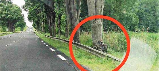gendarme-camouflage-radar-le-courrier-de-l-ouest