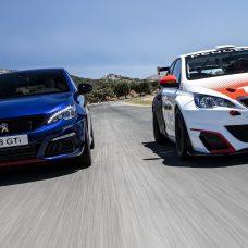 Peugeot 308 GTi & Racing Cup: réunion de famille sur le circuit d'Ascari!