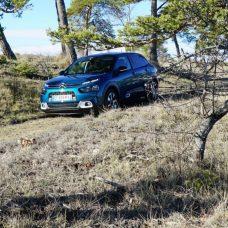 Citroën C4 Cactus : le SUV devenu berline à l'essai