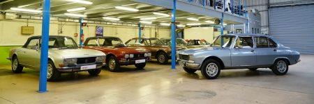 Peugeot 504 : retour sur le parcours de «L'Indestructible»