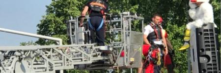 Strasbourg : un «homme-coq» grimpe sur un radar pour protester contre les PV