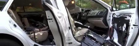 USA : un ours «ne fait qu'une bouchée» d'une Subaru Outback (vidéo)
