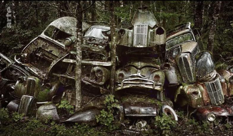 Les belles voitures au bois dormant